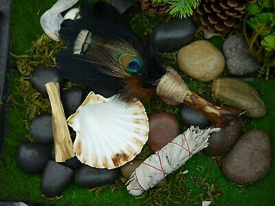 Smudging Kit  Feather Wand  Shell 10.5cm White Sage, Palo Santo Smudge
