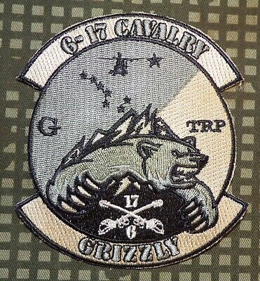 """US Army G Troop, 6th Squadron 17th Cavalry Regiment """"Grizzly"""" Subdued Patch"""