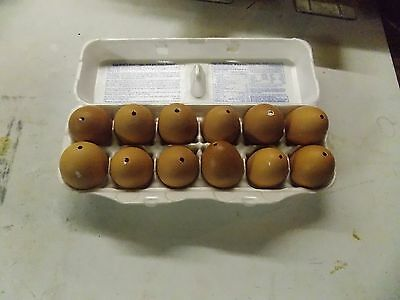 (12) Real blown chicken eggs brown with 1 hole for crafting