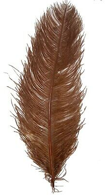 """3 BROWN Ostrich FEATHERS 18-23"""" Full Wing PLUMES; Bridal/Wedding/Centerpiece/Hat"""