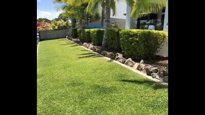 Lawn Mowing And Gardening Business
