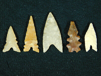 A Lot of FIVE! Ancient AAA North African Tidikelt Arrowheads or Points! 1.49 e