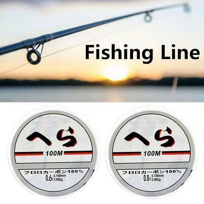Strong Fishing Line Japanese 100m Nylon Transparent Fluorocarbon Tackle Line