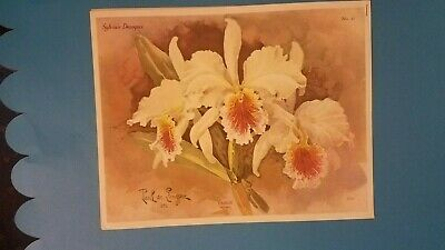 Slyvia McMichael 1958 Instructions for  Decorative Painting  ORCHIDS