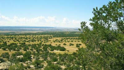 37.9 Ac Northern Arizona Mtn Views,Concho Valley Az, County Road N8483 Frontage