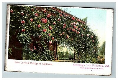 Vintage Greetings from Fullerton CA Rose Covered Cottage c1910 Postcard G23