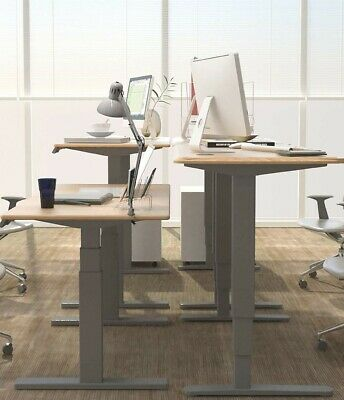 Programmable Height Adjustable Standing Desk