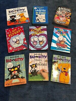Fly Guy, Bad Kitty, Diary Of A Wimpy Kid Book Lot Of 9