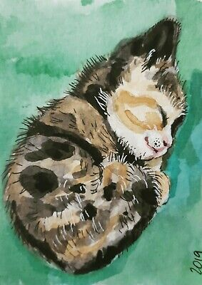 ACEO 2019 Original Art Gouache painting Cat Feline Pet Sleeping Kitten Sue Flask