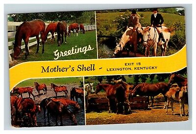 Greetings from Mother's Shell, Lexington KY c1960 Chrome Postcard I13