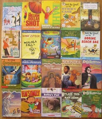 Lot of 15 RANDOM Boys Chapter Books Ages 8-12