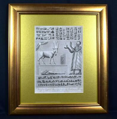 Antique 1804 Egyptology Engraving Manuscript from a Mummy's Wrappings V Rare