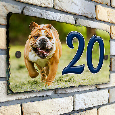 Bulldog House Number Slate Name Gate Sign Plaque Door Personalised SL11