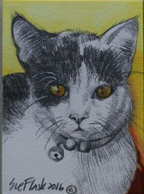 Set of 7 ACEO Original Acrylic Pen Gouache Pencil Feline Kitten Cat Sue Flask