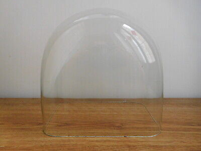 Antique Clock Taxidermy Glass Dome Rectangle Section