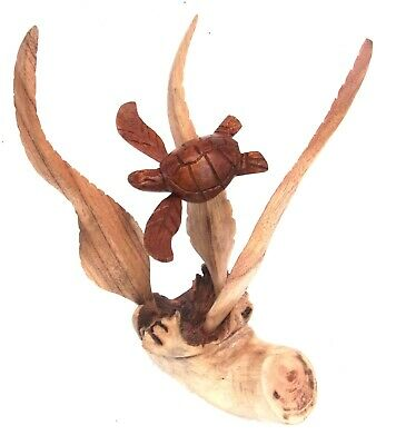 Unusual Hand Carved Turtle on Parasite Wood Bali wood Turtle Carving