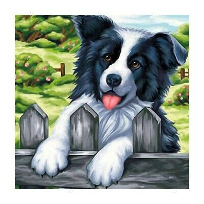 5D Full Drill Diamond Painting Kits Embroidery Decor Dog Animals DIY Art Gift AU