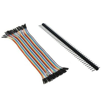 1pcs 10cm 2.54mm Female to Female Dupont Wire Jumper Cable with 1pcs 40 Pin U8X4