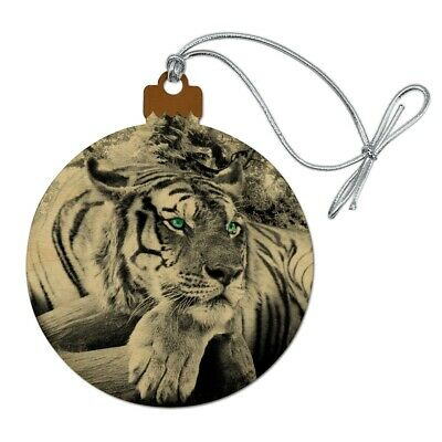 Black and White Tiger with Blue Green Eyes Satin Chrome Plated Metal Money Clip