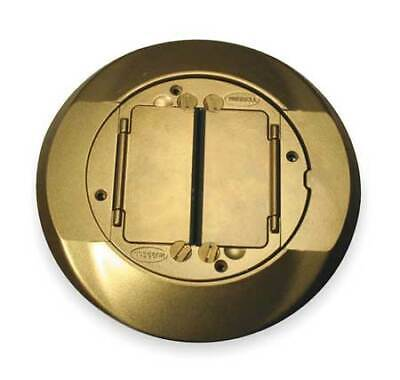 HUBBELL WIRING DEVICE-KELLEMS S1CFCBRS Floor Box Cover Carpet Flange,Brass
