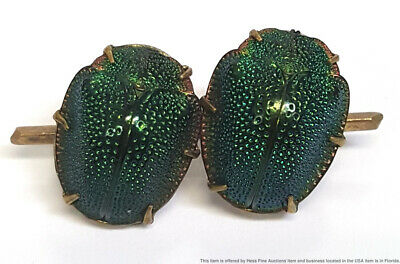 Genuine Antique Scarab Insect Arabic Middle Eastern Gold Filled Pin Made W Bugs