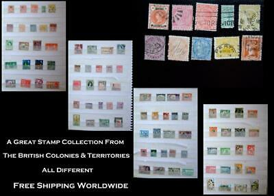Stamp Collection British Colonies Bechuanaland Barbados Victoria India Queenslan