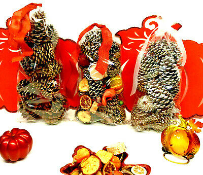 New Holiday Bags of Pinecones for a Beautiful Fall/Thanksgiving Display