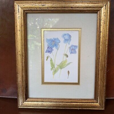 Blue Poppies  Contemporary Print in gold coloured frame
