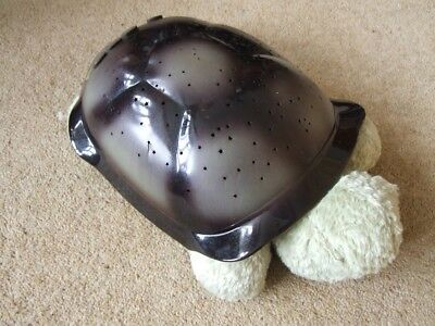 Turtle star constellation colour changing night light