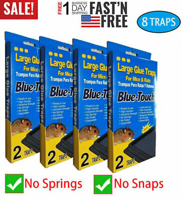 8 LARGE Sticky Glue Rat Mice MOUSE TRAPS Bait, No Poison Rodent 4 Boxes