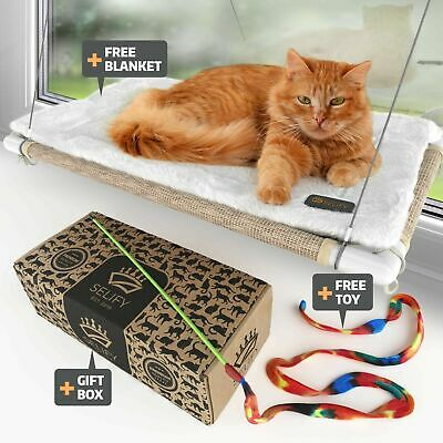 Cat Window Perch (Holds Up to 60 Lbs) – Durable Cat Perch Window WatchingCat ...