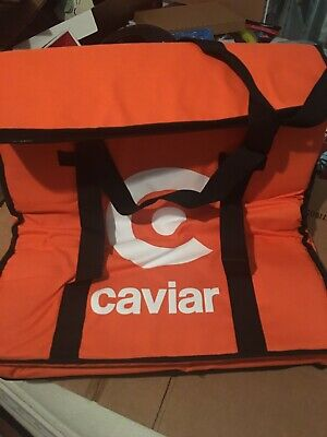"""Caviar Pizza Delivery Bag Thermal Insulated 20""""x 20"""" NYLON holds 4 16"""" Pizzas"""