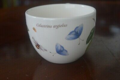 Wedgwood Sarah's garden cup several available FREEPOST