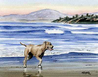 Pit Bull Terrier Puppy Art Print Sepia Painting 5 x 7 by Watercolor Artist DJR