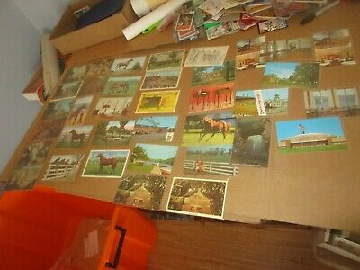 Big Mostly Vintage to 1930's Kentucky Postcard Lot With Horse Racing Postcards