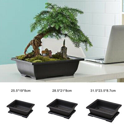 Rectangle Flower Pot Bonsai Nursery Planter Accessories Home Decoration Black