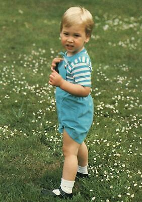 PRINCE WILLIAM in KENSINGTON PALACE GARDENS AGED 2 POSTCARD - UNUSED - EXCELLENT