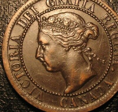 Old Canadian Coins 1901 Copper Canadian Large Cent  Canada Highgrade Sharp