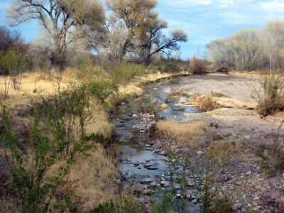 20 Acre Texas Near Rio Grande River ,Right Off Fm 170 Rd Frontage, Buy Now