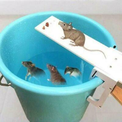 Walk The Plank Mouse Trap Mice Cage Auto Reset Rodent Bucket Board Controller