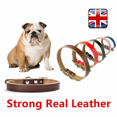Puppy Cat Strong Real Leather Adjustable Pet Collar Control  Four Sizes UK Stock