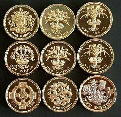 1983-1997 Elizabeth II £1 One Pound Proof Coins - Choose Your Year