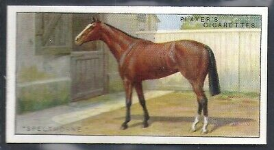 Players-Racehorses-#20- Horse Racing - Spelthorne