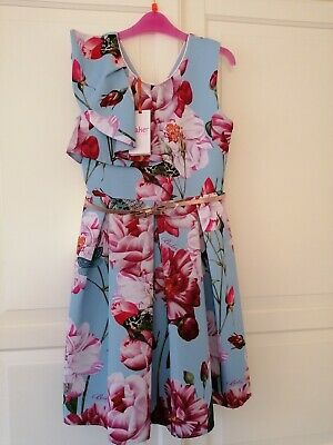 New Ted Baker Girls Blue Floral Frill Dress age 10 Years rrp£50