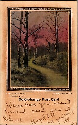 Colorchange Color Shifting Post Card H.C.J. Deeks & Co c1907 Vtg Postcard A26
