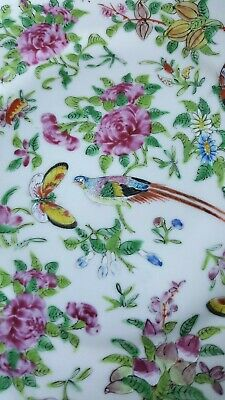 19thc Chinese Export Porcelain Plate Famille Rose Sacred Bird & Butterfly