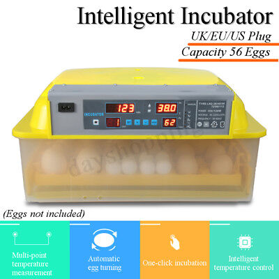 56 Egg Digital Automatic Incubator Hatcher Turning Chicken Temperature