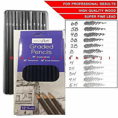 12 Graded Pencils Drawing Sketching Tones Shades Art Artist Picture Pencil - T
