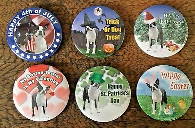 Lot of 6 Boston Terrier Holiday Dog Pins - Valentine Easter Halloween Christmas