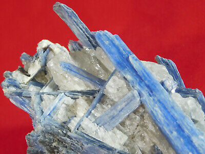 A BIG! 100% Natural AAA BLUE KYANITE Crystal Cluster! From Brazil 552gr